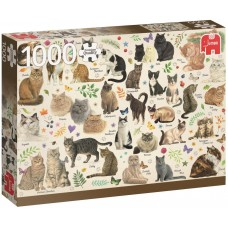 Jumbo 1000 - Cats