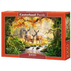 Castorland 1000 - Royal Family