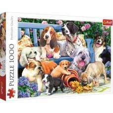 Trefl 1000 - Puppies in the garden, Daniela Pirola