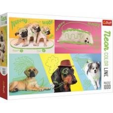 Trefl 1000 – Strange dogs